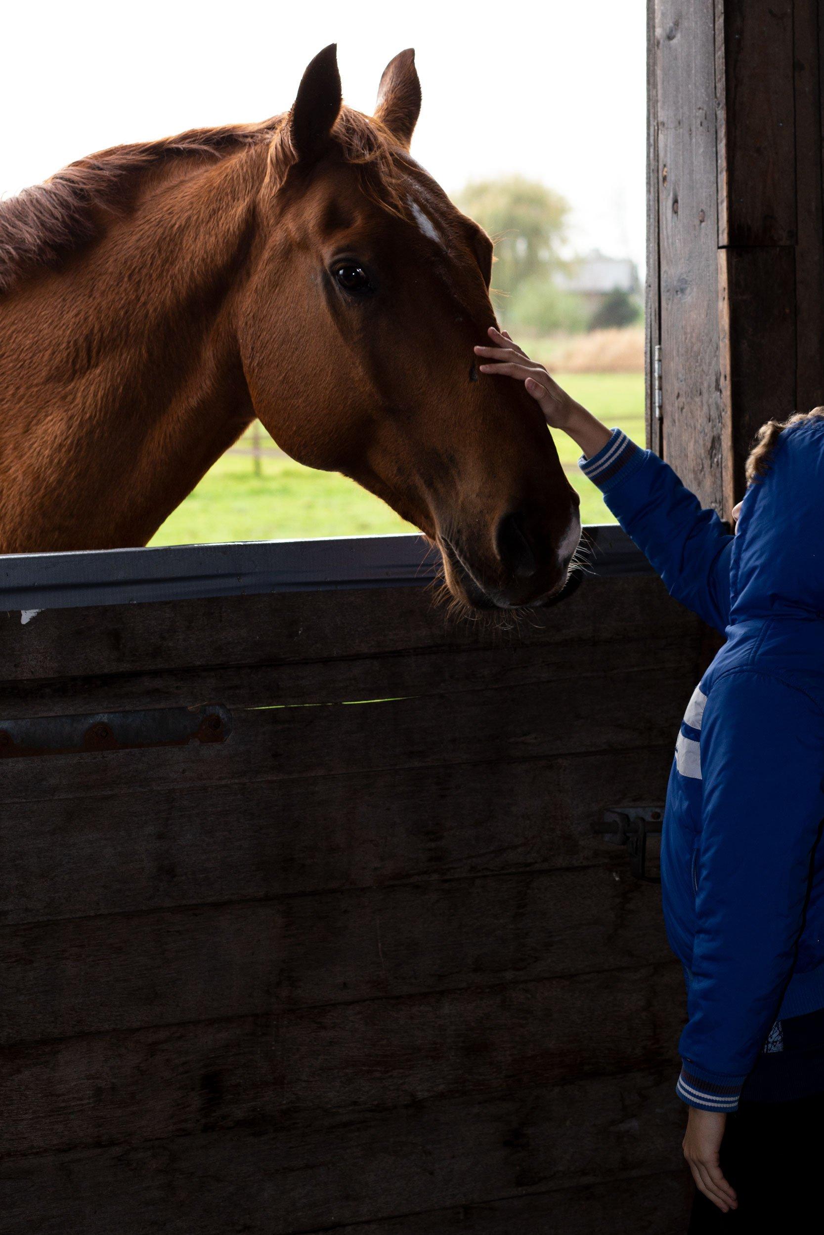 20190037  Paardentherapie door Annelies Kietselaer4